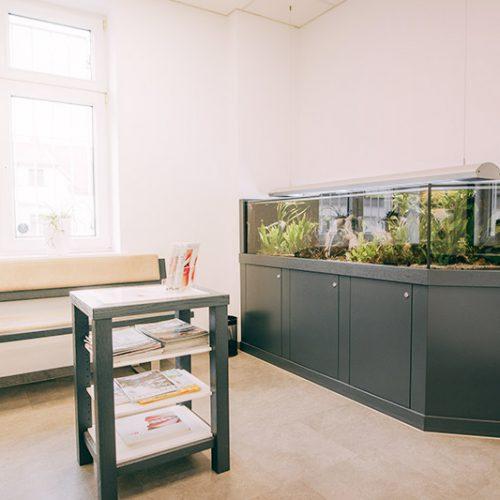 Wartezimmer mit Aquarium in der Zahnarztpraxis Dr. Henning Frank in Haldensleben.